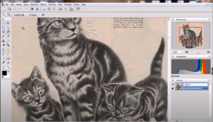 programas para diseñar tatuajes